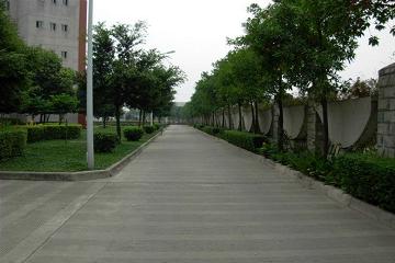资阳市雁江区忠义高级职业中学2019年招生计划